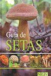 GUIA DE SETAS