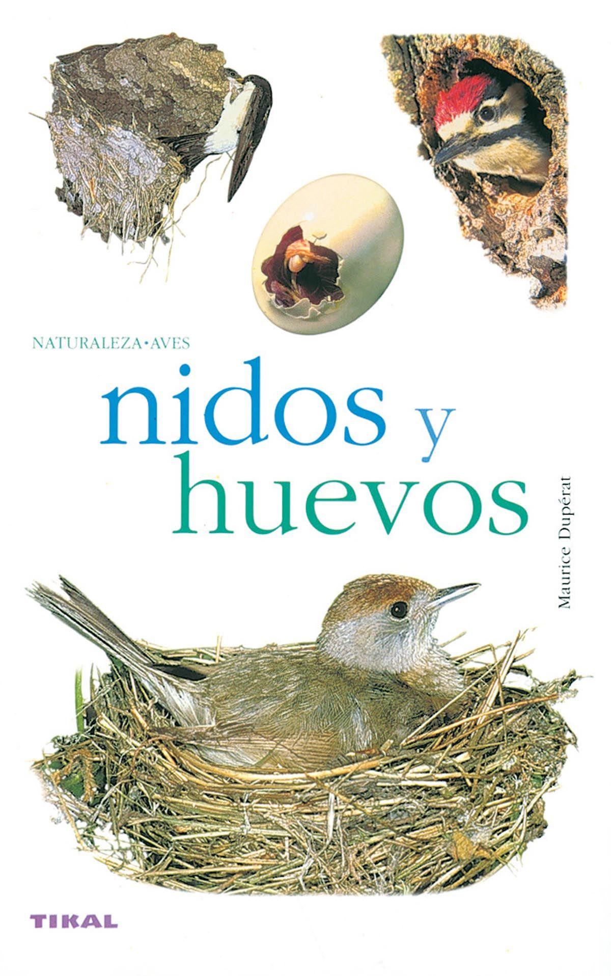 NIDOS Y HUEVOS