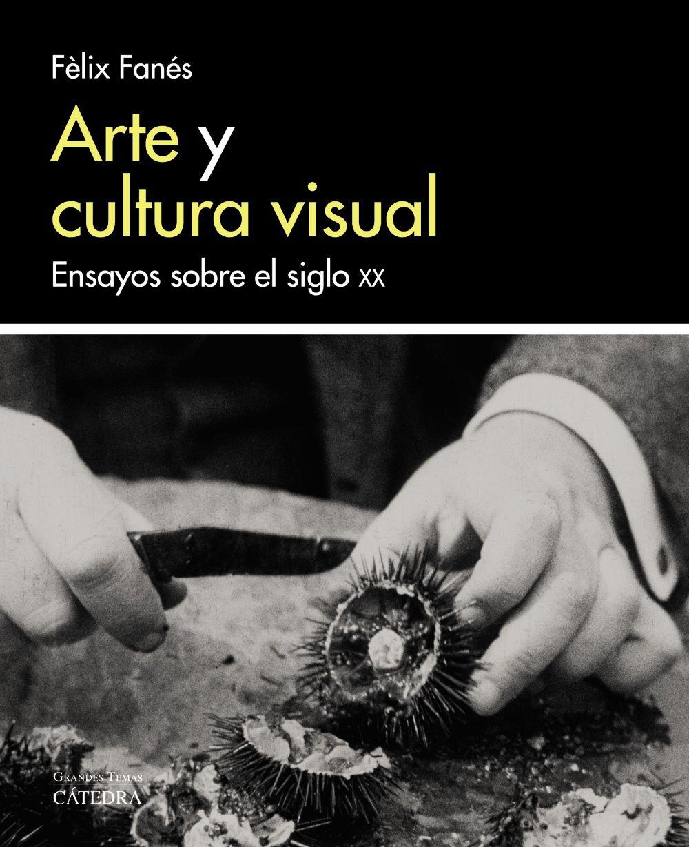 ARTE Y CULTURA VISUAL
