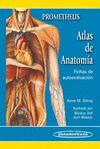 ATLAS DE ANATOMÍA. FICHAS DE AUTOEVALUACIÓN